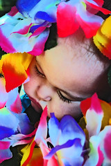 Honolulu Baby (boopsie.daisy) Tags: flowers sleeping baby color cute colors beautiful colorful nap eyelashes sleep slumber adorable sadie lei precious cheeks pout snooze chops chubby tuckered closedeyes snoozing pooped slumbering anawesomeshot fiveflickrfavs