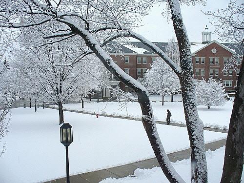 Snowy quad
