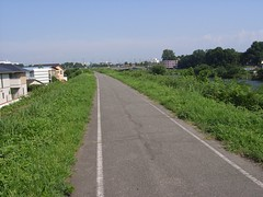 広瀬川沿いのサイクリングロード