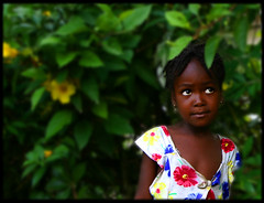 Flowergirl (LindsayStark) Tags: travel portrait girl children haiti war conflict humanrights humanitarian humanitarianaid emergencyrelief waraffected