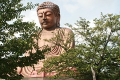Great Buddha, Tokai city, Aichi Japan (Steve-kun) Tags: japan buddha jp nagoya aichi tokai flickrcom greatbuddha stephendraper onlythebestare syurakuen shiawasemura centraljapanairport templesshrinescastlesofjapan stevedraperpictures draperphotography stephendraperphotography  flickrjp flickrflickr jpcom