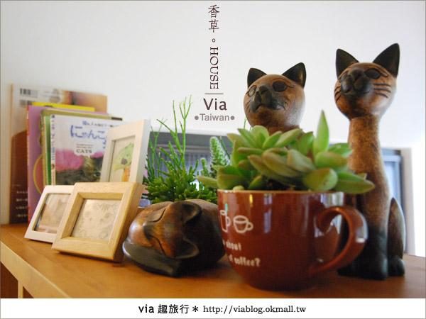 【新社】香草HOUSE~新社薰衣草森林最新溫暖系民宿(上)11
