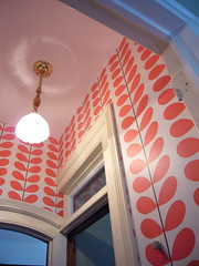 tiny space, big pattern! (hitbyabus) Tags: anthropologie beanstalk orlakiely
