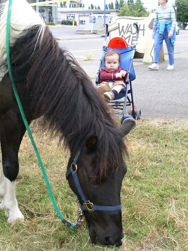 nathan, hating ponies