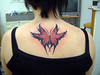 butterfly Tattoo Tattooed at The