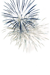 Dark Blue (backpackphotography) Tags: show light color night vancouver fireworks contest firework international inverted celebrationoflight backpackphotography