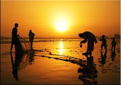 blessing in disguise (!!sahrizvi!!) Tags: ocean pakistan sunset sea sun sunlight reflection net beach water beautiful silhouette fishing fisherman sand fishermen dusk silhouettes shore backlit seawater abigfave aplusphoto