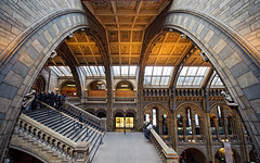 Natural History Museum 2 (Philipp Klinger Photography) Tags: uk roof light shadow london history window stone museum stairs is nikon europe arch natural britain south united great illumination kingdom ceiling be there gb what about kensington railing philipp hdr nhm ashamed klinger nohdr aplusphoto ultimateshot d700 dcdead