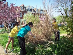 student volunteers help with the Hebert garden (courtesy of ONSL Restoration Group)
