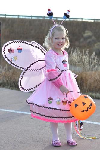 Sweet Cupcake Fairy