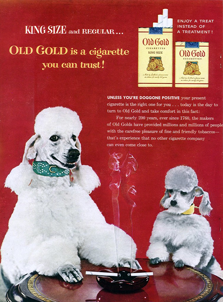 1954 - Old Gold Smoking Poodles