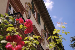 _SMR7724.NEF (sraubenstine) Tags: germany deutschland badhomburg