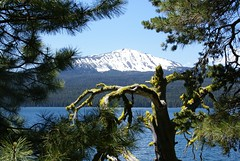 Lake and Mt. a perfect pair (DavidK-Oregon) Tags: trees mountain lake snow tree nature beautiful oregon forest scenery sony scenic diamond alpha a100 diamondlake absolutelystunningscapes