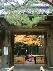 KOTOIN (310875) Tags: red orange woman man tree leaves yellow japan pine garden japanesegarden leaf kyoto gate finepix 京都 fujifilm kimono 紅葉 秋 autmn greenn 高桐院 koutouin bumboo wonderfulworldmix