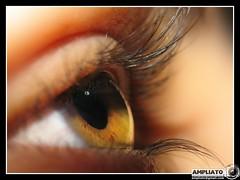 Olhos postos no Criador - by Ampliato [ Edu ]