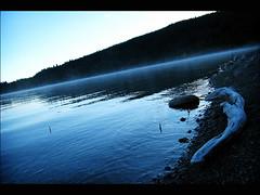 wyoming- grand teton 4 (mariacaridad) Tags: wood morning blue lake reflection water fog landscape photography nationalpark rocks photos wyoming grandteton waterscape jacksonlake