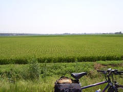 三条の田園風景