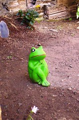 Sapah (Didts) Tags: ceramica adorno casa jardim minha sapa