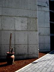 8 enero 2005 258.jpg (Clauminara) Tags: color mxico architecture mexico arquitectura mexicocity df universidad autonoma metropolitana mexic ciudaddemexico xochimilco distritofederal uam mejico mjico uamx uamxochimilco universidadautnomametropolitanaunidadxochimilco
