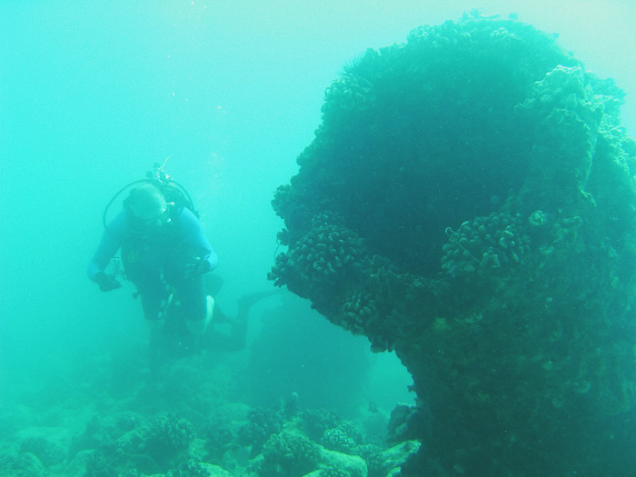 scuba diving oahu 179