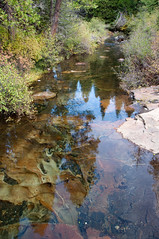 Creek Photo