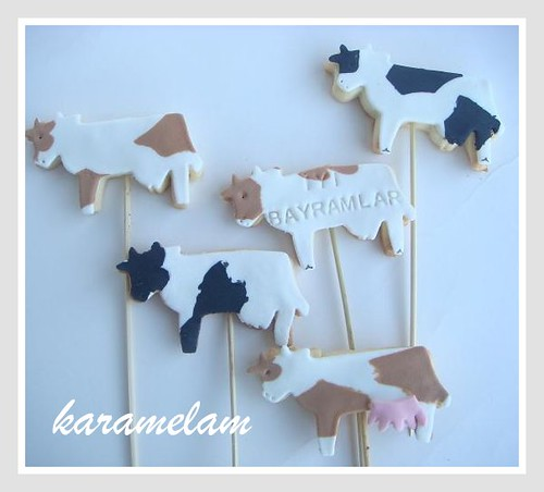 cow cookies for aid al adha