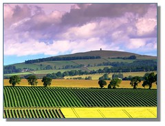 Kinpurney hill (dougiegr) Tags: wood fruit landscape scotland dundee angus hill scottish observatory fields carse sidlaws gowrie sidlaw kinpurney backmuir