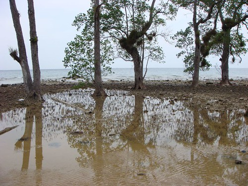 Air Batang, Tioman Island.