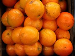 laranja - by tuli nishimura