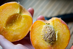 How to Make Nice Peach Slices, 3