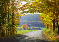 Farm on Sartwell Creek Road (02_10a) (zormsk) Tags: autumn mountains fall pennsylvania farm foliage dairy countryroad pottercounty zormsk route6 pawilds tlmccormick