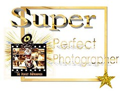 Super Perfect Photographer