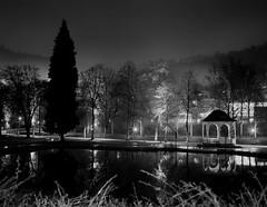 Night talks (Vitaly_S) Tags: winter tree 120 film fog night mediumformat landscape nebel nacht mf across 2009 baum 67 xtol11     pentax67 fujiacross100   p67ii 677545