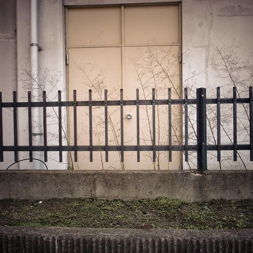 Door Weed Fence Grass Wall