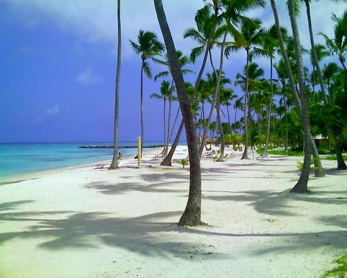 Punta Cana: Uno de los lugares más bellos del mundo! | Playas y ...