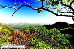 Vale do Rio Preto - Parque Nacional Chapada dos Veadeiros (Alto Paraso de