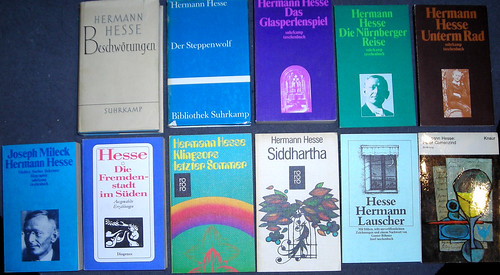 Steppenwolf by Herman Hesse, Books.