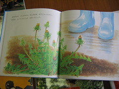 Dandelion book (inside 1)