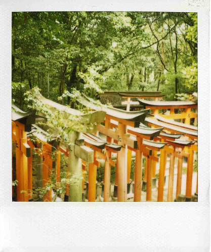 fushini inari [polaroid version]