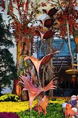The Fall (TLC Fotografie) Tags: las vegas fall colors lone cypress bellagio khalid turk the kmt anawesomeshot colorphotoaward kmtphotosbykmtcom wwwphotosbykmtcom