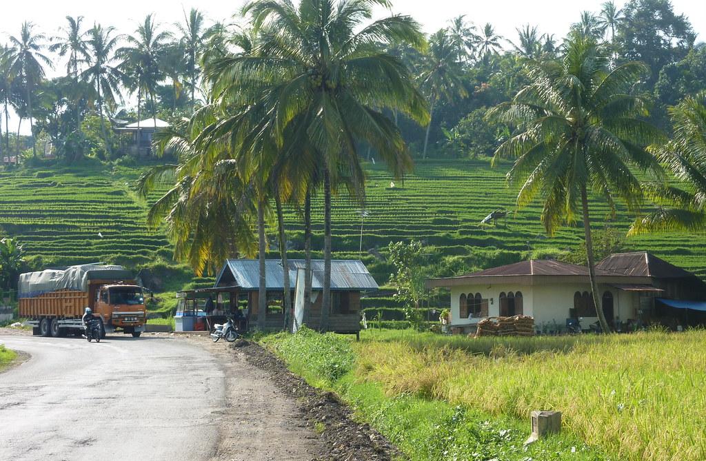 Sumatra-Bukittinggi (229)