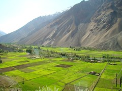 Phandar Lake (Khurram Aziz) Tags: pakistan sky lake mountains tourism water landscape village rice valley fields greenery ricefield ricefields gilgit ghizer riceplantation baltistan phandarlake phandarvalley lakesinpakistan gilgat phandar landscapesofpakistan roadtogilgit lakeinpakistan landscapepakistan