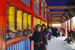 pilgrims (Xuan Che) Tags: red summer color film 2004 wheel yellow architecture 50mm kodak praying july scan negative monastery m42 amdo labrang tibetan xiahe pentacon pilgrim gansu gannan 1850mm prakticallc 100gold