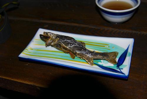 岩魚の塩焼き(本日2匹目)