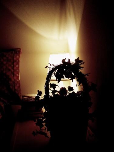 My Zen Corner-I