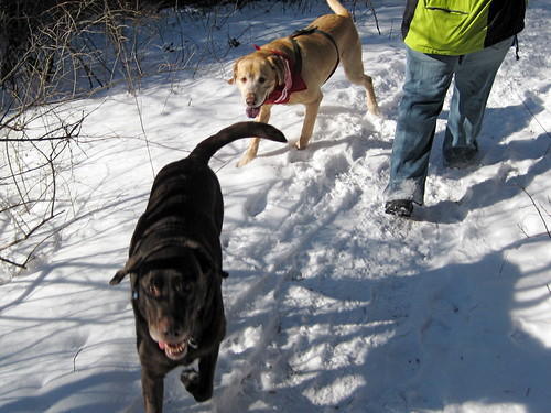 2008_01_03_Hiking_Stony - 077