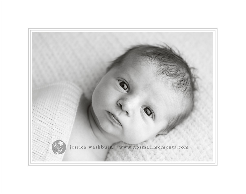black-and-white-newborn-photography
