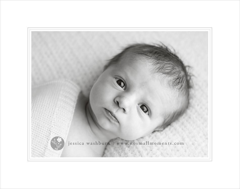 black-and-white-newborn-photography