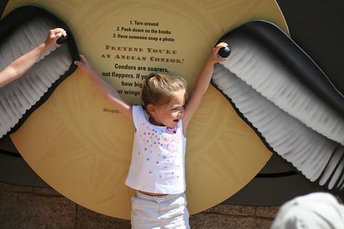 foto: thelanders flickr.com