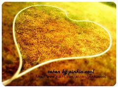 ..[..بكيت ولابقى في قلبي المظلـوم غيـر جـروح..].. (D o 7 ε) Tags: